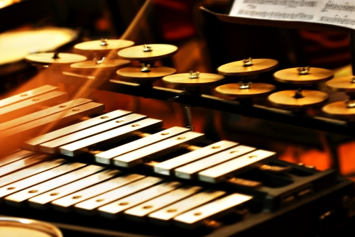 percussion orchestral instruments
