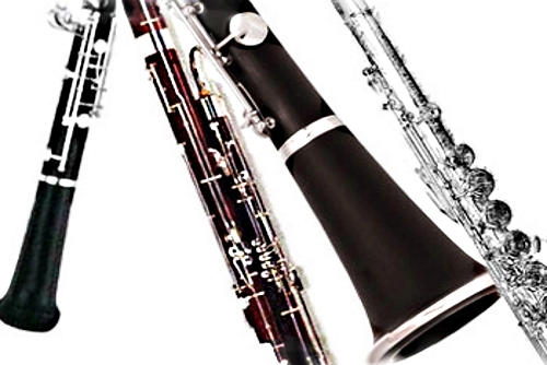 orchestral woodwind instruments